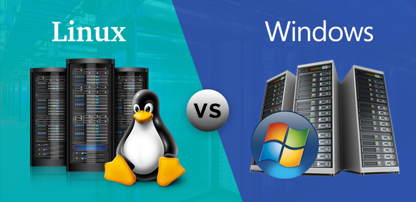 Linux or Windows VPS Hosting