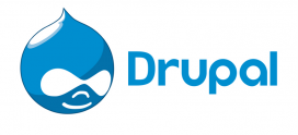 Drupal Hosting Provider: An Easy Guide for Non-Technical Customers